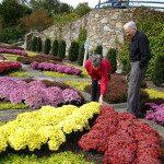 Quilt garden in fall.