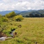 The rich fertile soil of Andrews Valley continues to support modern agriculture.  Courtesy of BlueRidgeHighlander.com©