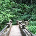 Pearsons Bridge