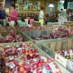 Apples in abundance for sale.