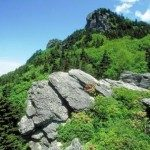 Rugged terrain hosts an amazing biodiversity.