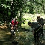 """Biologists and park rangers sampling for fish in a stream"" Photo Credit: Dave Cook, NCDPR"