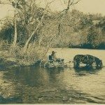 "Trekking the early Howard Gap Road, settlers crossed a cane-lined creek, later aptly named ""Cane Creek,"" less than one-half mile before the road's terminus in present day US Hwy 25.  ""Buggy in Cane Creek,"" circa 1880s. NC Collection, Pack Memorial Library."