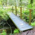 Bridge constructed on the nature trail.